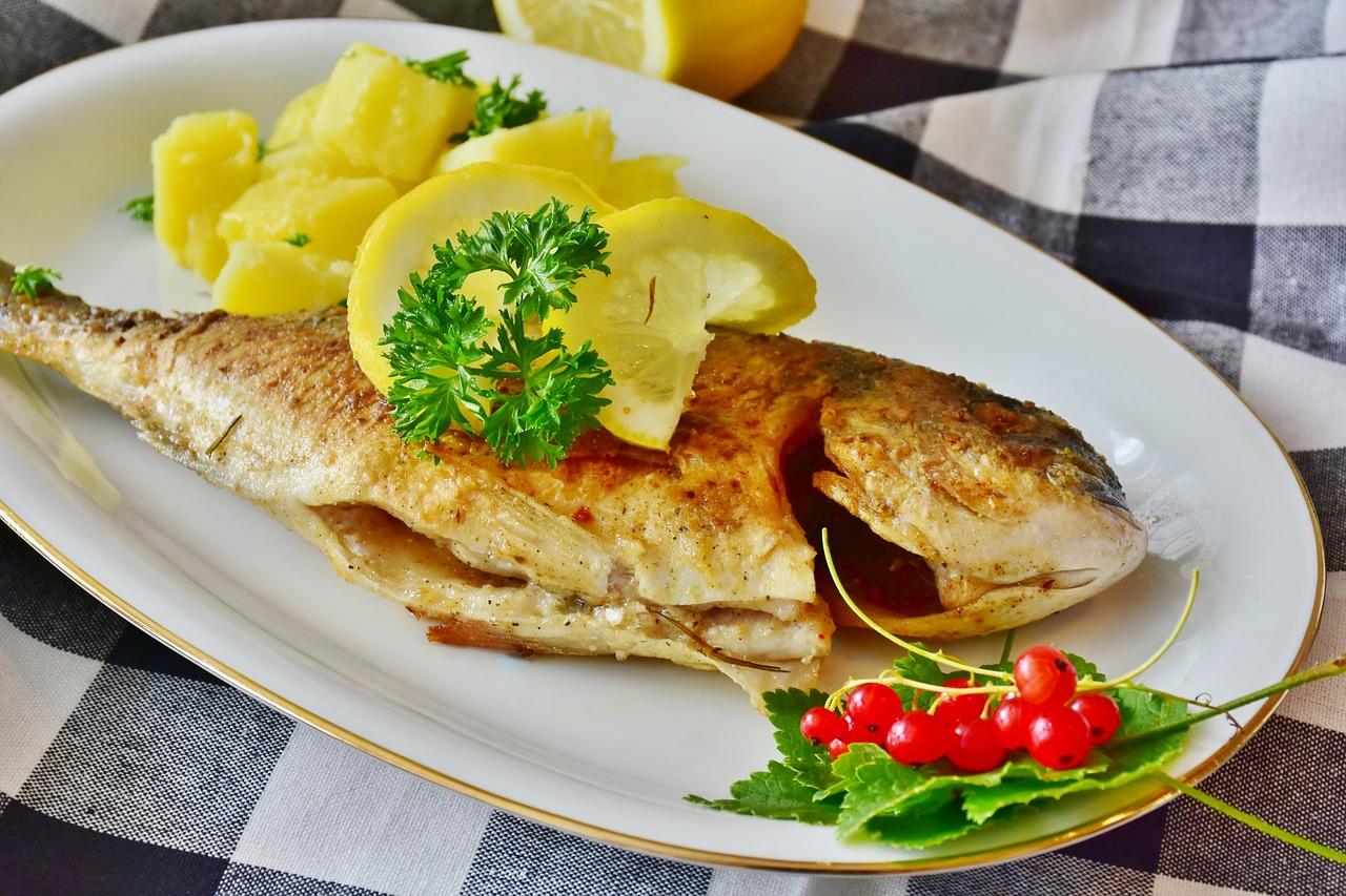 fish-3483465_1280