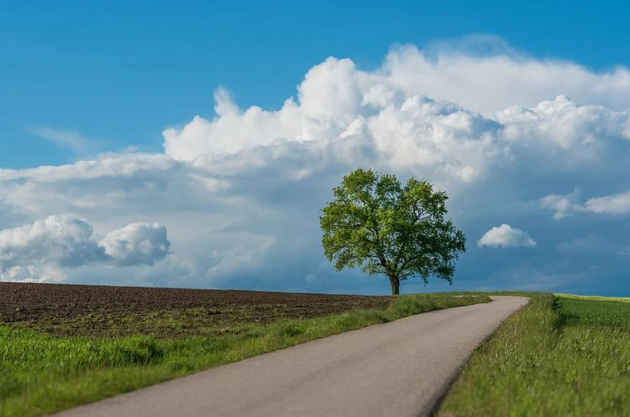 silnice v přírodě